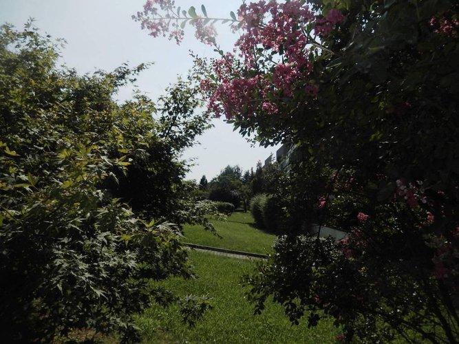 bergamo quadrilocale immerso verde Bergamo