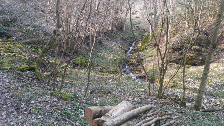 RUSTICHETTO CON AMPIO TERRENO DI 58.000 MQ San Pellegrino Terme